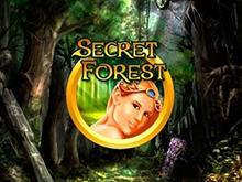 Secret Forest онлайн в казино Вулкан