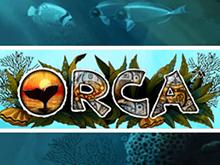 Слот Orca в казино Вулкан