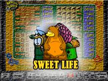 Демо аппарат Sweet Life